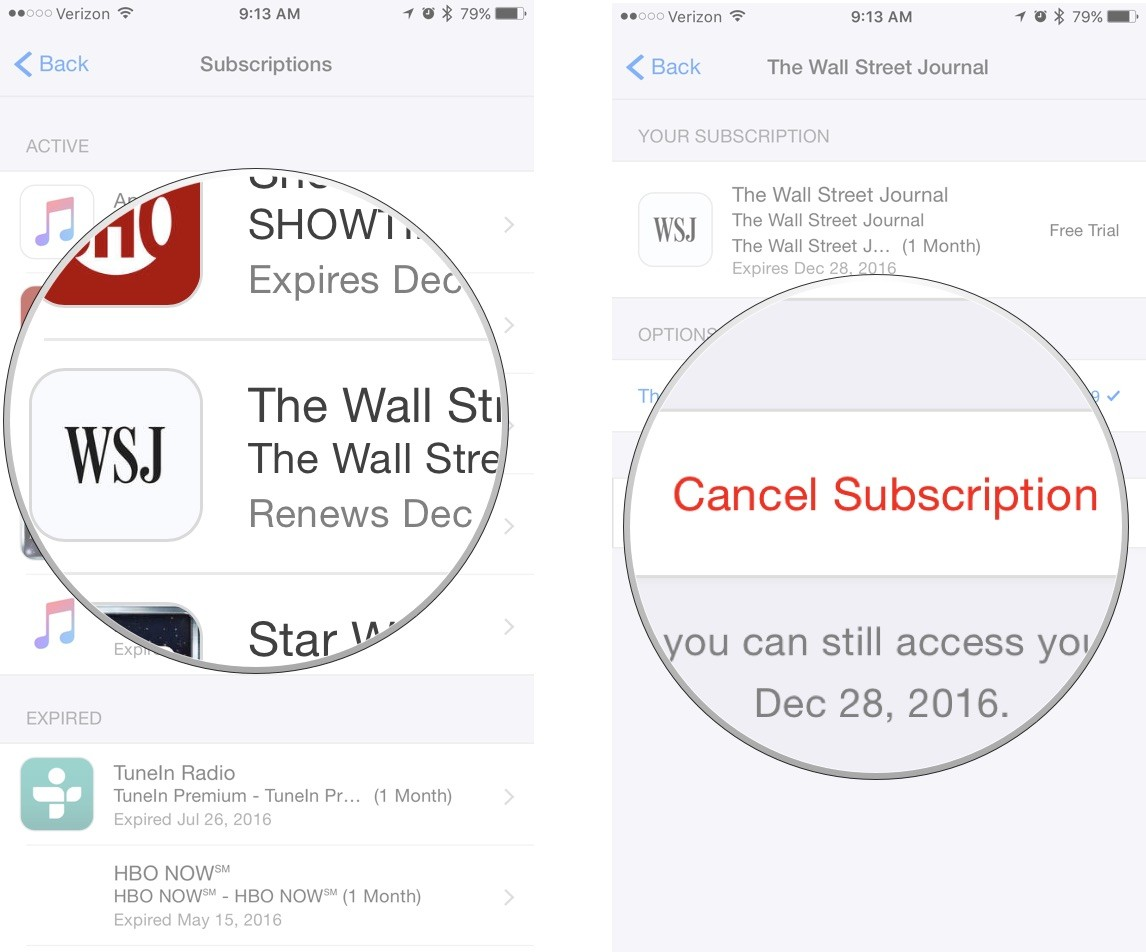 cancel-subscription-iphone-screenshot-03