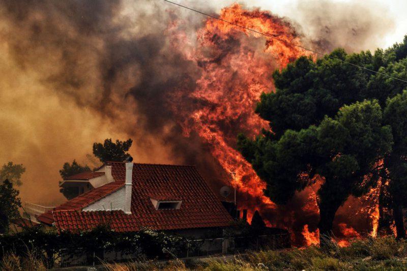 foc grecia
