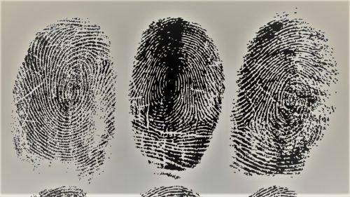 transpitație detectare criminali