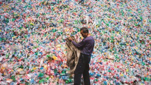 Salvarea de la catastrofa poluării cu plastic se află chiar în natură