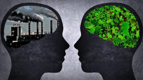 Cât de rău îți afectează poluarea aerului inteligența
