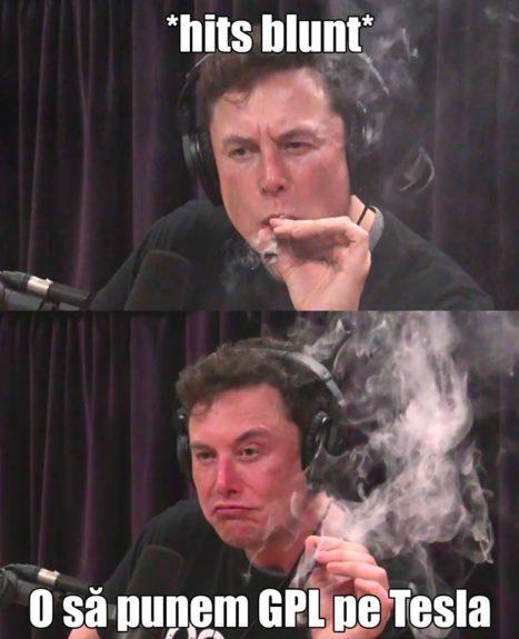 elon musk meme glume elon musk fumeaza iarba