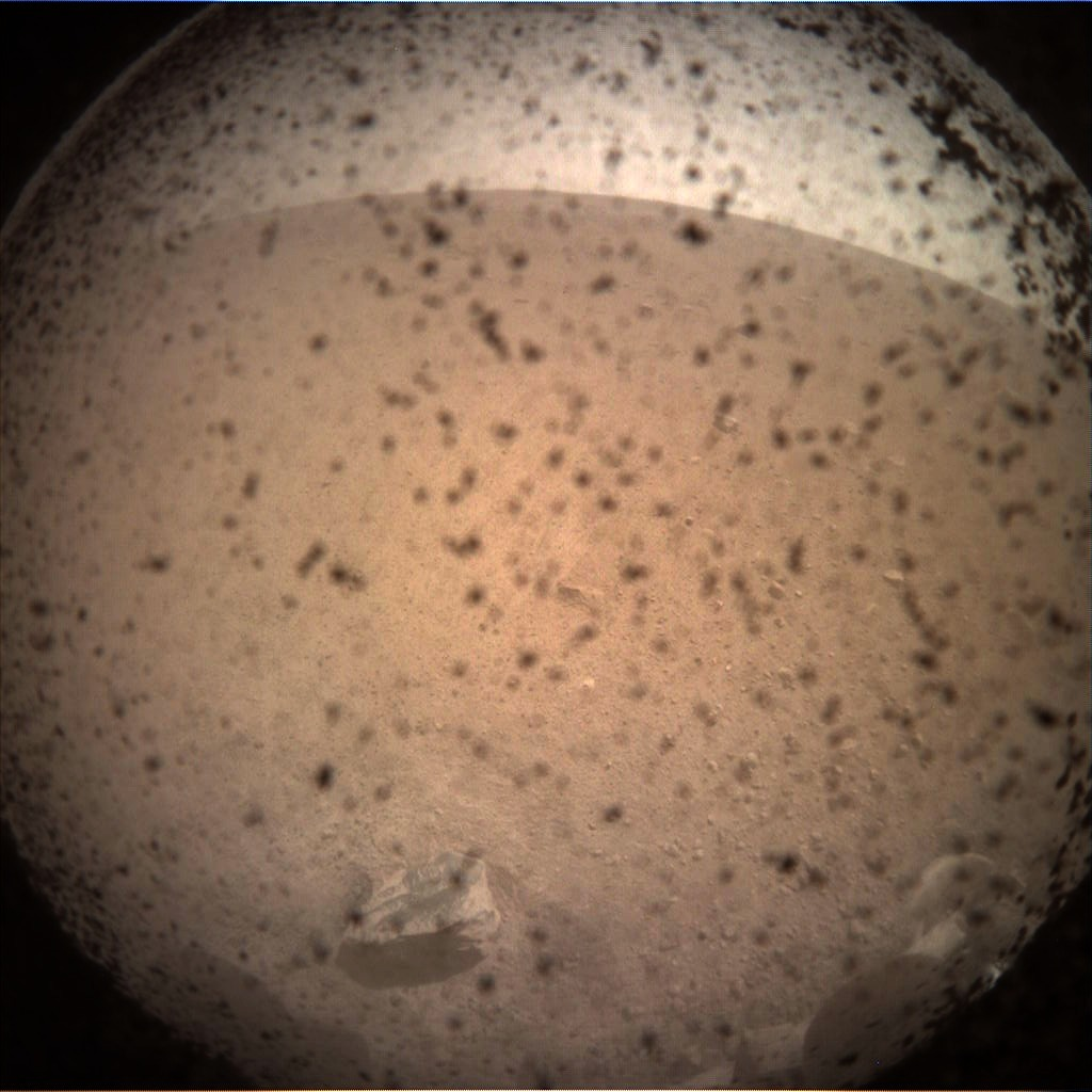 insight first photo