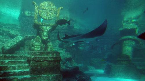 Cercetătorii încă nu se pot hotărî dacă Atlantida a existat sau nu