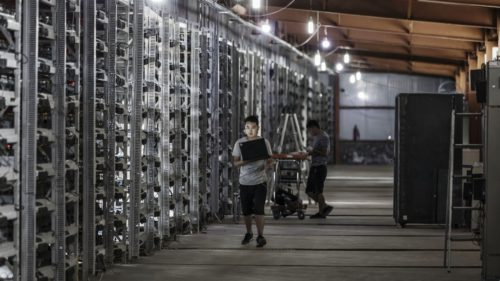 În China, la fiecare patru zile, un startup devine unicorn
