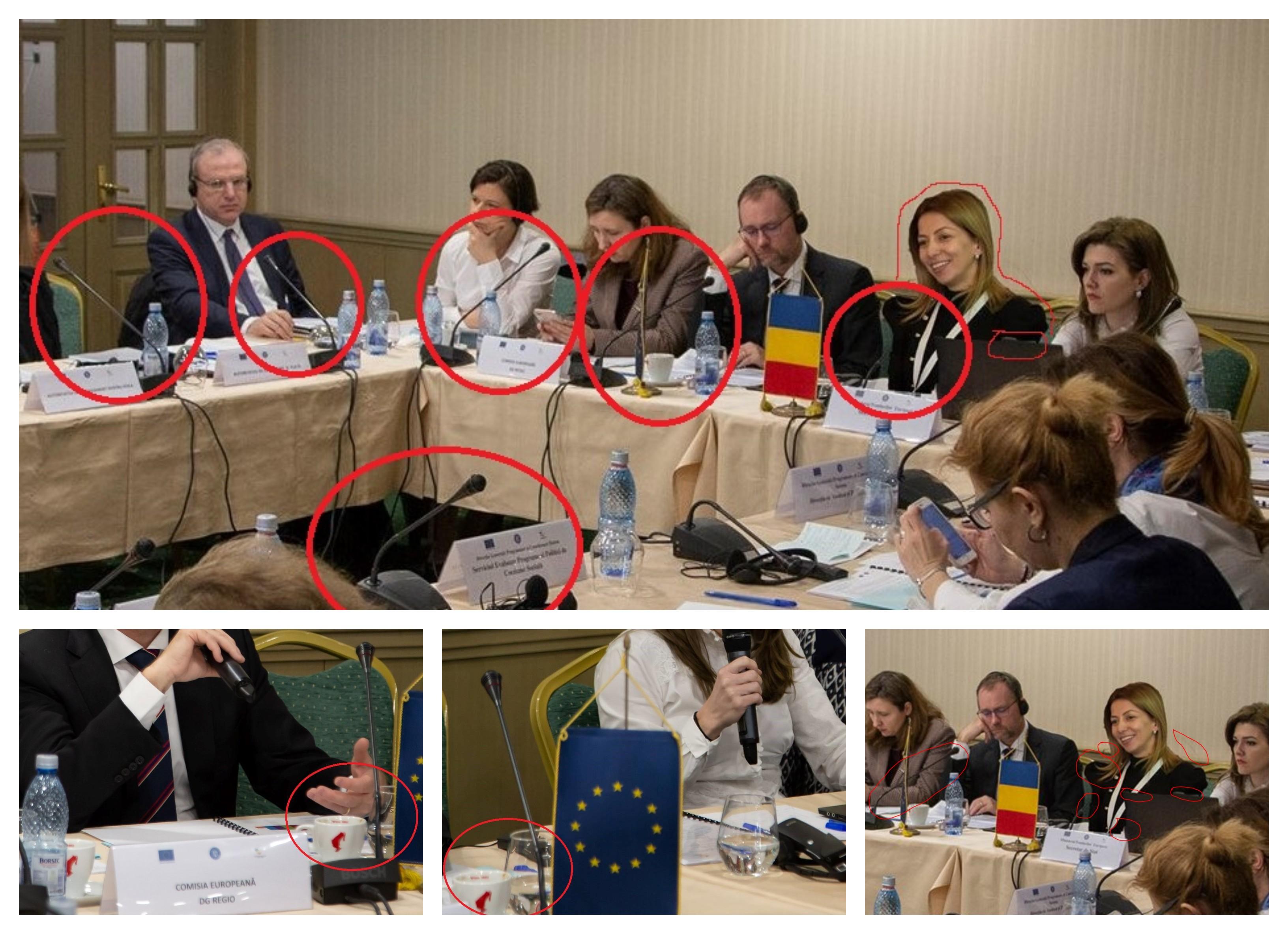 Secretar de stat Photoshop Mihaela Toader