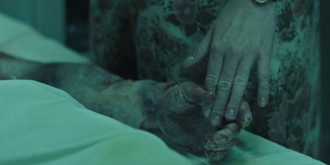 Chernobyl Radioactivitate molipsitoare