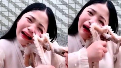 A vrut să fie vedetă online, dar a speriat internetul: ce vină a avut caracatița