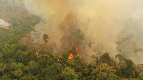 Mii de incendii noi în Amazon, când lumea a început să uite de problemă