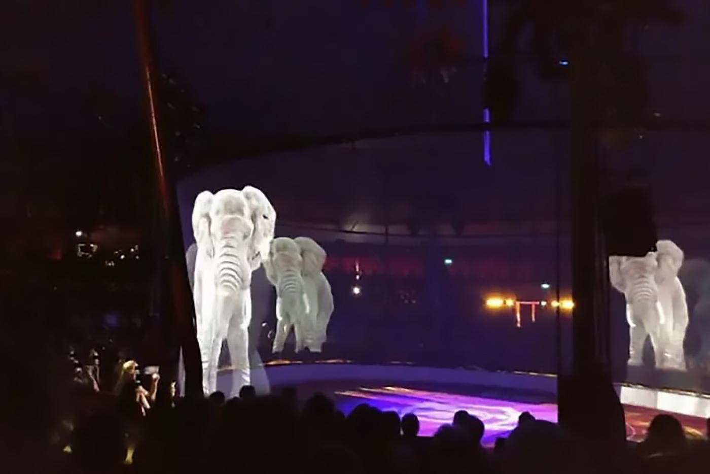 circul cu holograme protectia animalelor