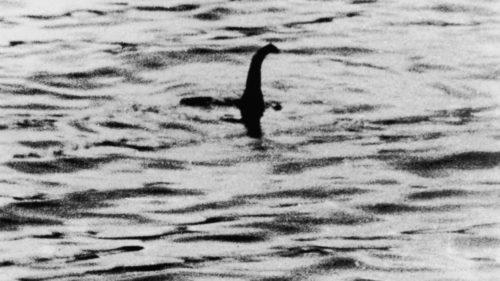 Explicația cercetătorilor pentru monstrul din Loch Ness: ce este de fapt