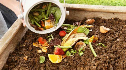 România săracă și risipitoare: câte tone de alimente ajung zilnic la gunoi