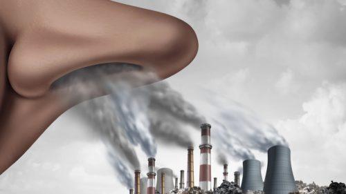 Poluarea aerului îți afectează inteligența și nici nu contează cât crezi în încălzirea globală