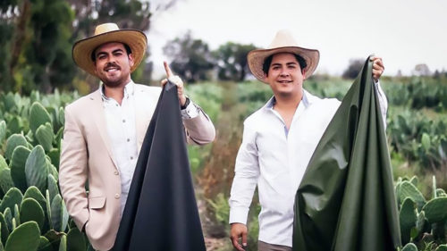 Inventatorii care au creat piele artificială din cactus