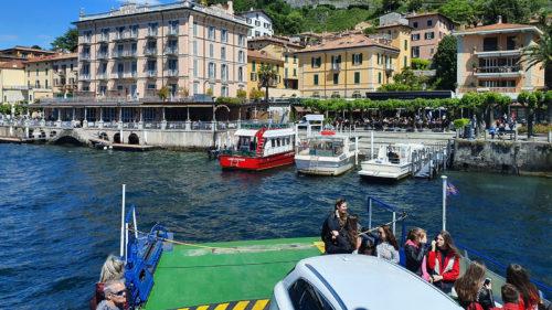 Delfinii din Veneția sunt o minciună: ce s-a întâmplat, de fapt, în Italia