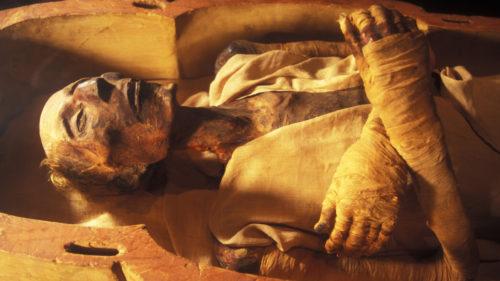 Cel mai bătrân om cu pașaport, o mumie egipteană: povestea fascinantă din spatele documentului banal