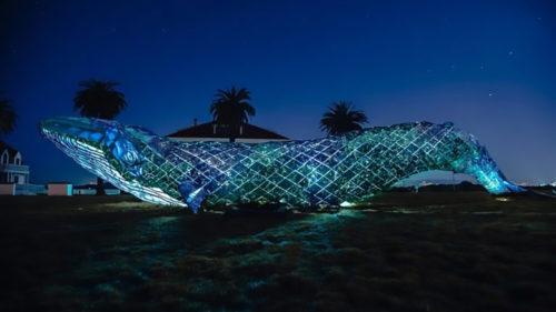 """Ar putea fi cea mai mare strucutură din plastic reciclat: cum a fost posibilă """"balena albastră"""""""