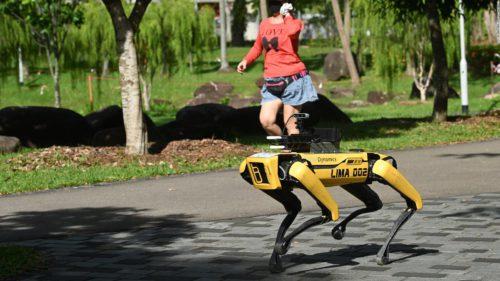 Primul robot care încurajează practicile de distanțare socială, eliberat în parcuri