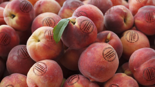 Invenția românească prin care vei ști dacă fructele și legumele sunt bune de mâncat