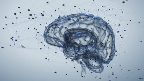 Cum ne-am transformat funcțiile creierului ca să putem citi