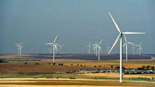 Soluția extrem de simplă prin care turbinele eoliene pot să nu mai fie letale păsărilor