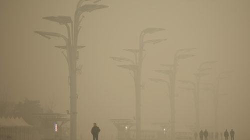 Limitarea deplasării din timpul pandemiei a dat lumii cea mai puternică lecție când vine vorba de climă