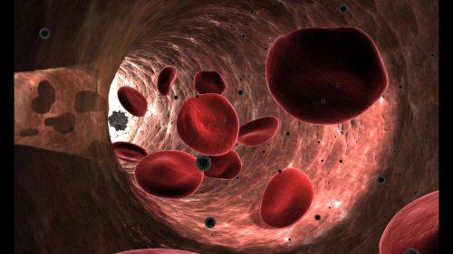 Descoperirea bizară făcută de cercetători după ce-au pus celule într-un labirint
