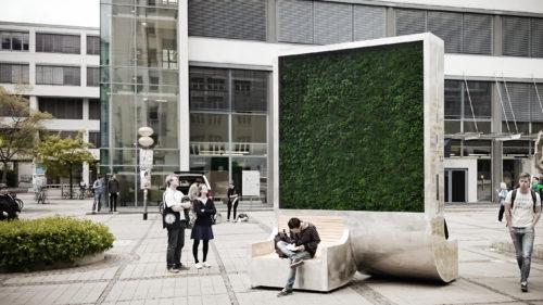 Ideea revoluționară prin care Clujul vrea să elimine poluarea: ce-s lichenii de 70.000 de euro bucata