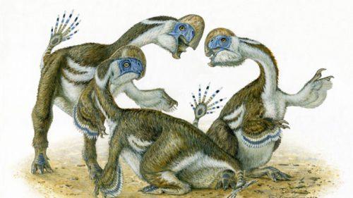 Au existat și dinozauri mai puțin fioroși: fără dinți și cu doar două degete