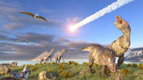 Ce impact a avut încălzirea globală asupra celor mai mari animale care au trăit vreodată pe Pământ