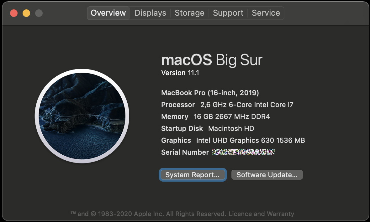 Apple procesor Intel