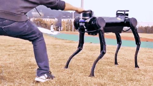 """Câinele robot care se """"dresează"""" singur: care e secretul creatorilor pentru această reușită"""