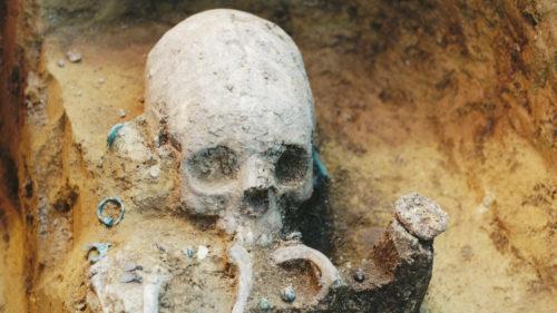 Descoperire uimitoare: asemănarea dintre un craniu de om și unul de extraterestru