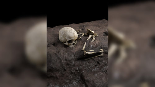 Cum s-a descoperit cea mai veche înmormântare umană din Africa și ce ne spune acest lucru despre strămoșii noștri