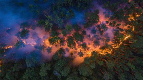 Motivul pentru care cea mai rece regiune din lume este în flăcări
