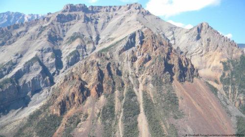 Cum arată fosila de 890 de milioane de ani, cea mai veche formă de existență a unui animal pe Pământ