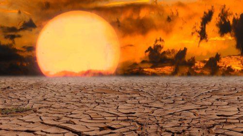 Ne-a cam ars vara asta: a fost cea mai caldă din istorie, conform experților