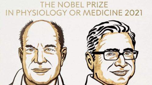 Premiul Nobel pentru Medicină 2021: cine sunt cercetătorii David Julius și Ardem Patapoutian, ce descoperire au făcut